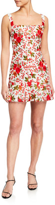 Alexis Melora Rose-Print Pleated Mini Dress