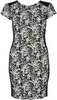 Quiz **Quiz Bodycon Panel Dress