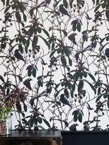Witch & Watchman Folia Birds Wallpaper