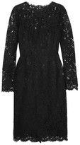 Dolce & Gabbana Cotton-blend Corded Lace Dress - Black