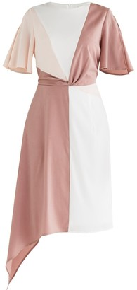 Paisie Dione Panel Dress In Pink
