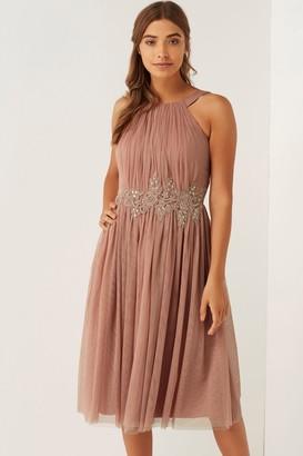 Little Mistress Apricot Applique Mesh Dress