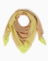 Charming charlie Color Border Scarf