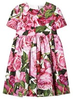 Dolce & Gabbana Pink Rose Print Cotton Dress