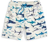 Hatley Toddler Boy's Toothy Sharks Swim Trunks