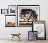 Pottery Barn Ridge Distressed Gallery Frames