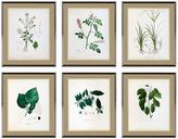 Eichholtz Botanica Prints Set Of 6