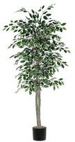 "Vickerman Variegated Ficus Tree in Black Plastic Pot and American made Excelsior (72"")"