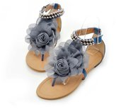 DanSoul Women's Chiffon Petal Sandals Flip Flop Flat Sandals Plus