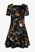 Ted Baker Oriental Floral Dress
