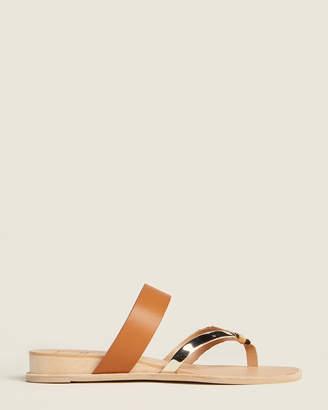 Dolce Vita Cognac Petula Slide Sandals