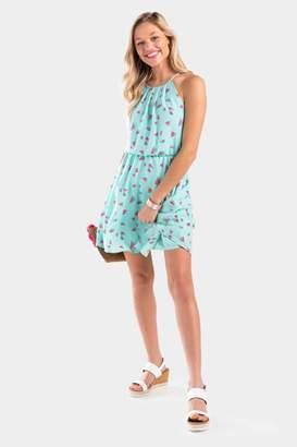 francesca's Watermelon Print Flawless Dress - Mint