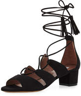 Tabitha Simmons Isadora Suede Lace-Up Sandal, Black