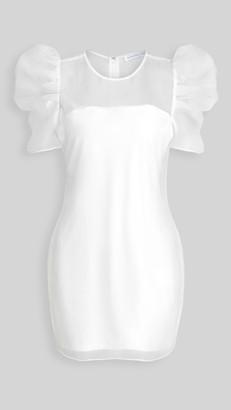 Endless Rose Puff Sleeve Organza Dress
