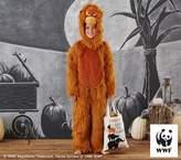 Pottery Barn Kids Endangered Orangutan Costume, 7-8