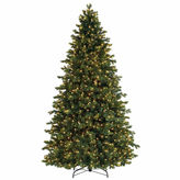 Asstd National Brand 7.5' Pre-Lit Savannah Spruce Artificial ChristmasTree with Clear Lights