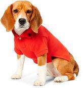 Ralph Lauren Cotton Mesh Dog Polo