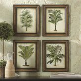 Tropical Palm Prints
