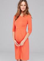 Isabella Oliver Ivybridge Maternity Dress