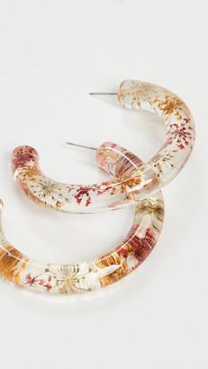 Lele Sadoughi Dried Floral Hoops