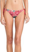 Cecilia Prado Bikini Bottoms