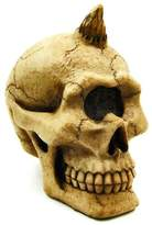 Summit Cyclops Skull - Collectible Figurine Statue Sculpture Figure Skeleton