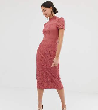 Little Mistress Tall lace detail midi pencil dress in terracotta