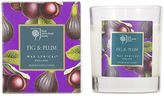 Plum Wax Lyrical RHS Scented Wax Glass Filled Candles Fig &