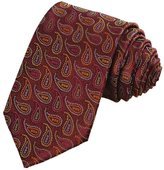BUYEONLINE Men's Colorful Paisley Ties