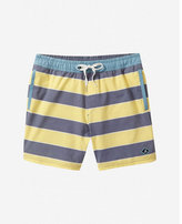 Express sperry rug-by the bay striped swim shorts