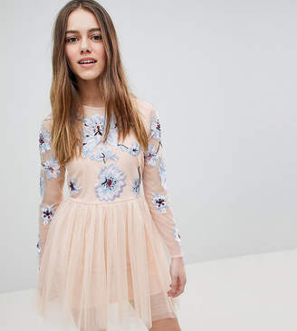 Asos DESIGN Petite pastel embroidered tulle mini dress-Pink