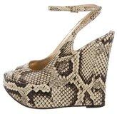 Dolce & Gabbana Python Wedge Sandals