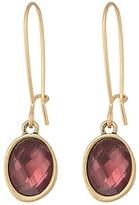 The Sak Color Hoop Drop Earrings