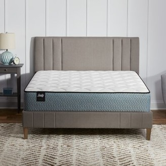"""Sealy 8"""" Innerspring Bed in a Box Mattress Size: Queen"""