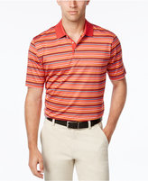 Cutter & Buck Men's Big and Tall Oakes Mercerized Polo
