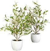 18 in. H Green Olive Silk Tree with Vase (Set of 2)