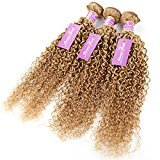 Beauty&youth United Arrows Beauty Youth Hair Kinky Curly Peruvian Virgin Human Hair Weft Grade 8A 100% Unprocessed Hair Extension pack of 3 Bundles (12 14 16, #27)