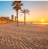 WindowPix 42x42 Inch Decorative Static Cling Window Film Barcelona Beach at Sunset . Printed on Clear for Window Glass panels. UV protection, Energy Saving.