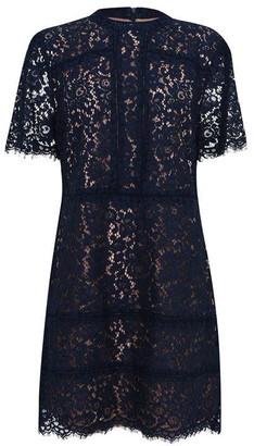 Oasis Curve Tamara Lace Shift Dress