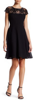 London Times Scalloped Lace Fit & Flare Dress (Petite)