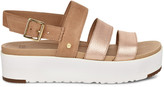 Women's Braelynn Metallic In Color: Rose Gold Shoes Size 7 LEATHER / SUEDE From Sole Society