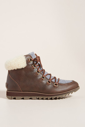 Sorel Harlow Cozy Lace-Up Boots By in Purple Size 6