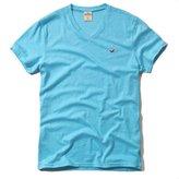 Hollister HCO Logo Men's Striple and Plain T shirt Tee (S, Aqua Plain)