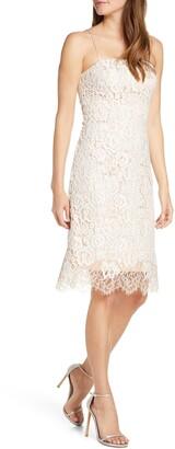 Eliza J Lace Cocktail Dress