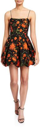 Saylor Maureen Floral Sleeveless Balloon Skirt Fit-&-Flare Dress