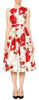 Dolce & Gabbana Poppy & Daisy Open-Back Party Dress, Red/Black/White