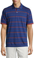 Robert Graham Angola Cotton Polo Shirt, Dark Navy