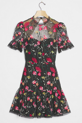 ML Monique Lhuillier Aly Embroidered Mini Dress By in Assorted Size 6