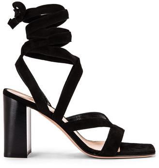 Gianvito Rossi Camoscio Strappy Sandals in Black | FWRD
