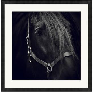 Pottery Barn Dark Horse Framed Print